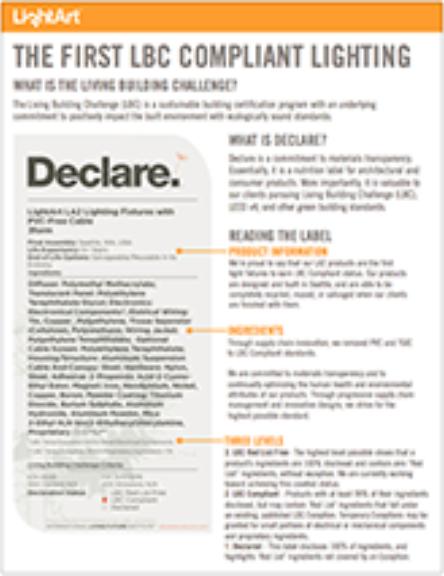 Declare Info