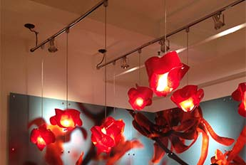 Red Orchid Pendants - Showroom