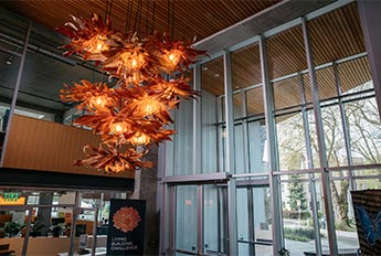Custom Chandelier - Bullitt Center